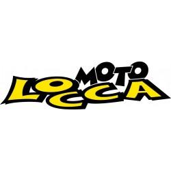 Contatti   Mail   info@teamlocca.it